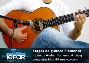 Stages de guitare flamenca